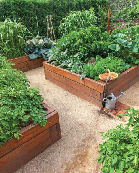 Milo Shammas healthy garden